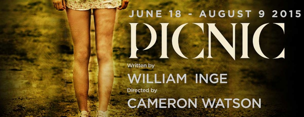 Picnic-Cover-With-Text-1024x397